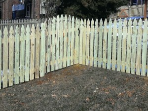 Gate Spaced French Gothic Picket